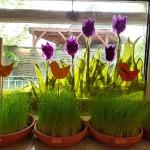 Jahreslauf - Frühling_2