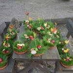 Jahreslauf - Frühling_3